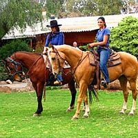 חבילת ספא זוגי ויטול סוסים פרטי